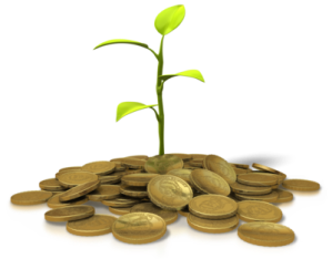 coins_investing_plant_400_clr_8756